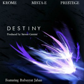 Destiny by Steven Gemini -MP3